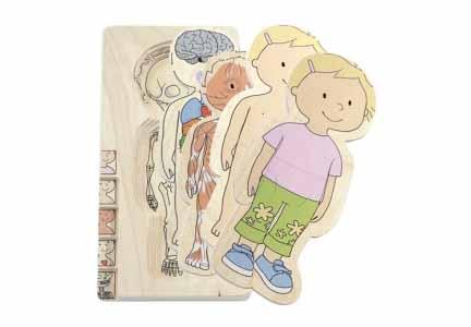 L'integrazione corporea